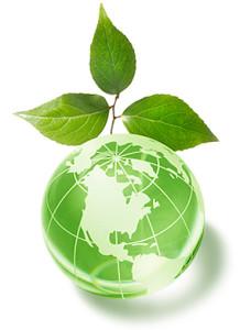 ekologia_zielona_produkcja